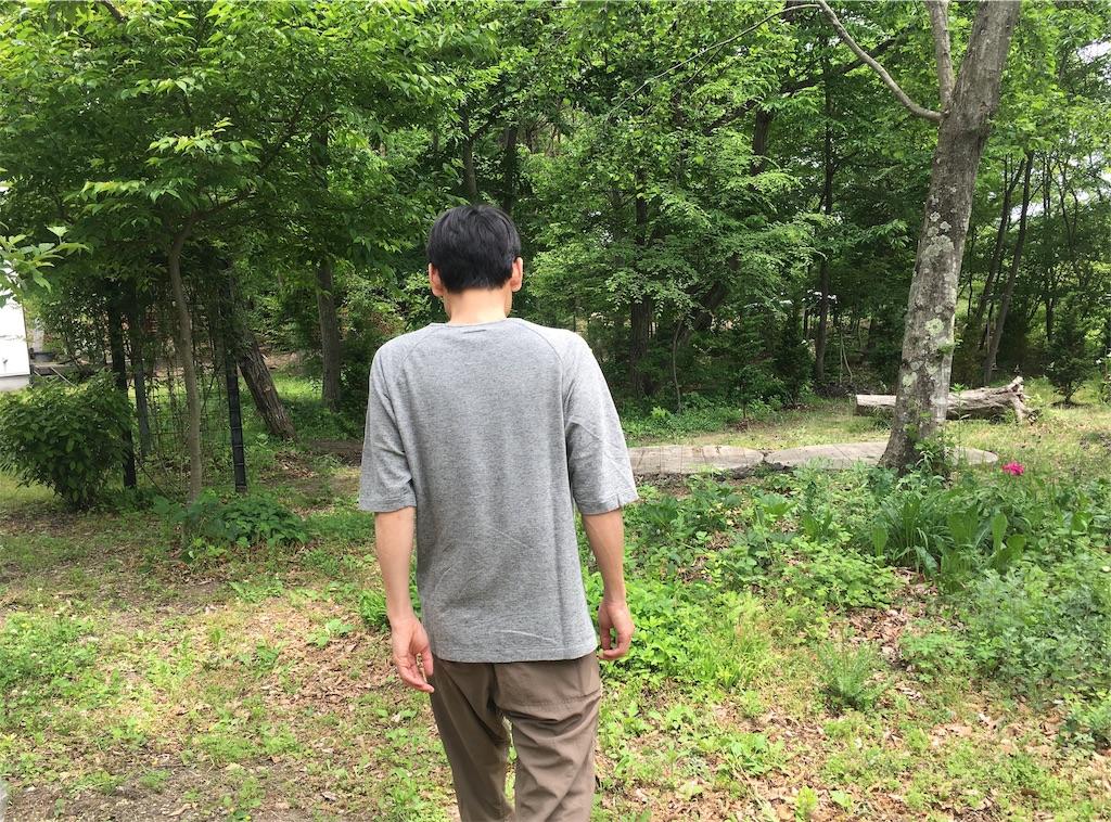 f:id:sainomori:20190606201822j:image