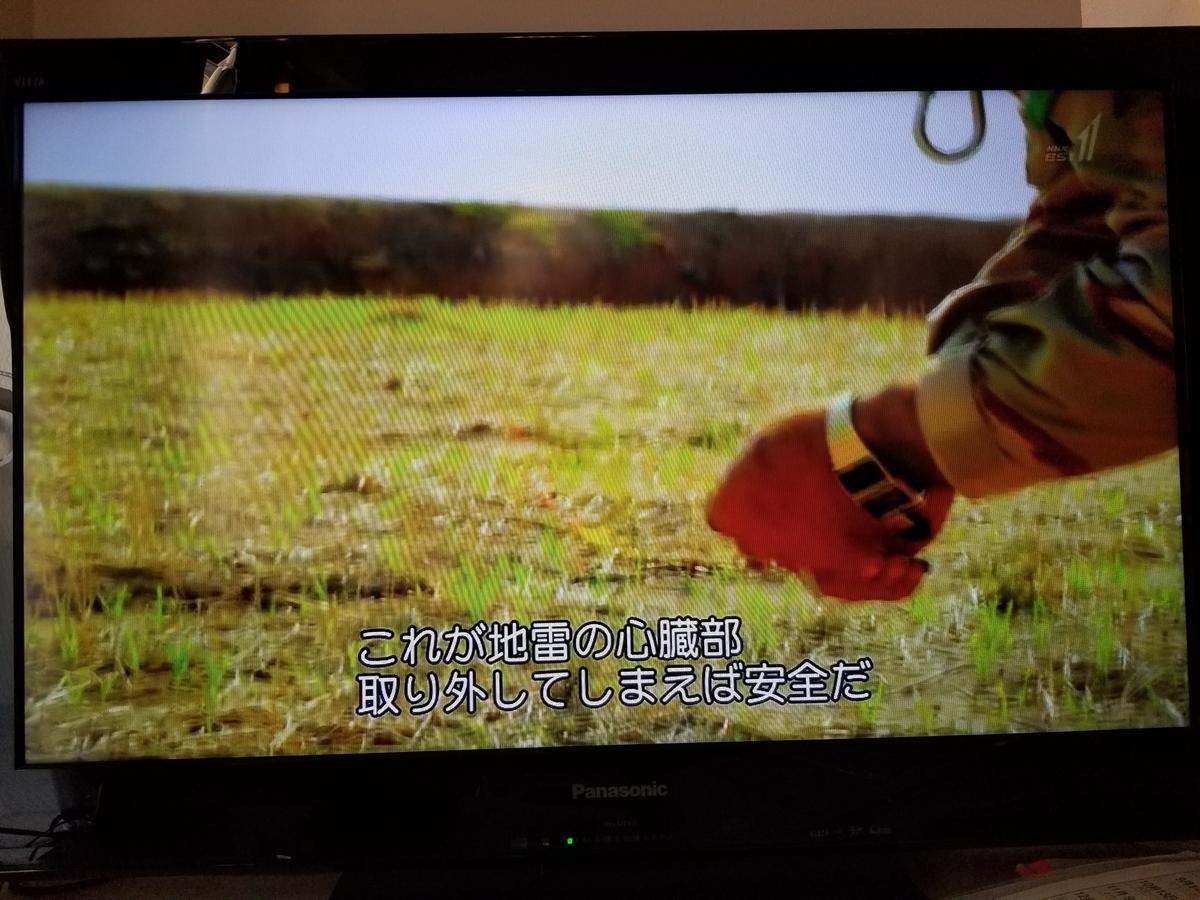 f:id:saio-ga-horse:20190326204812j:plain