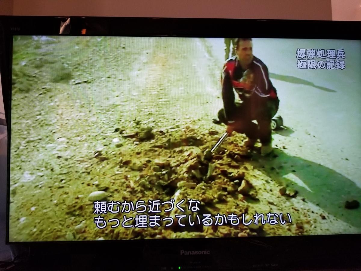 f:id:saio-ga-horse:20190326213601j:plain