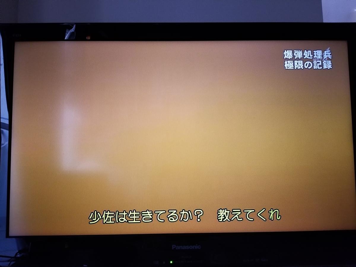f:id:saio-ga-horse:20190326232618j:plain