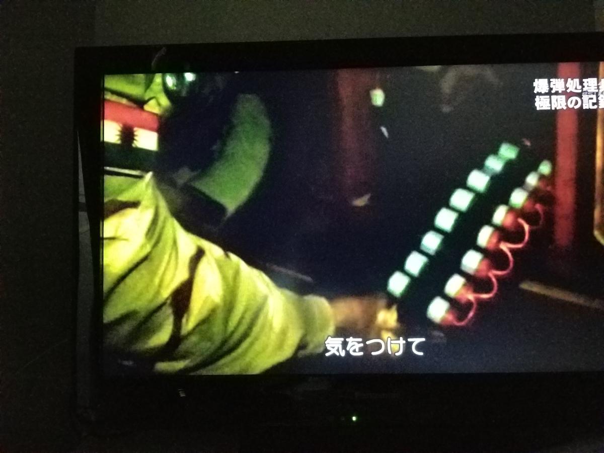 f:id:saio-ga-horse:20190328171230j:plain