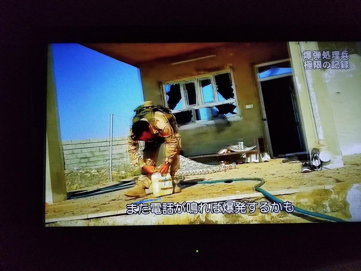 f:id:saio-ga-horse:20190328172749j:plain
