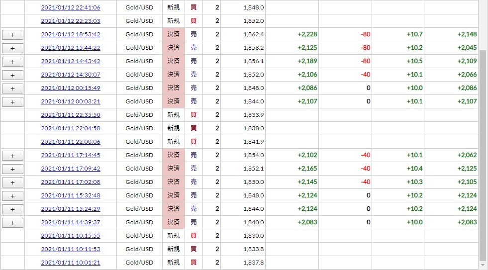 f:id:saio-ga-horse:20210117121958j:plain