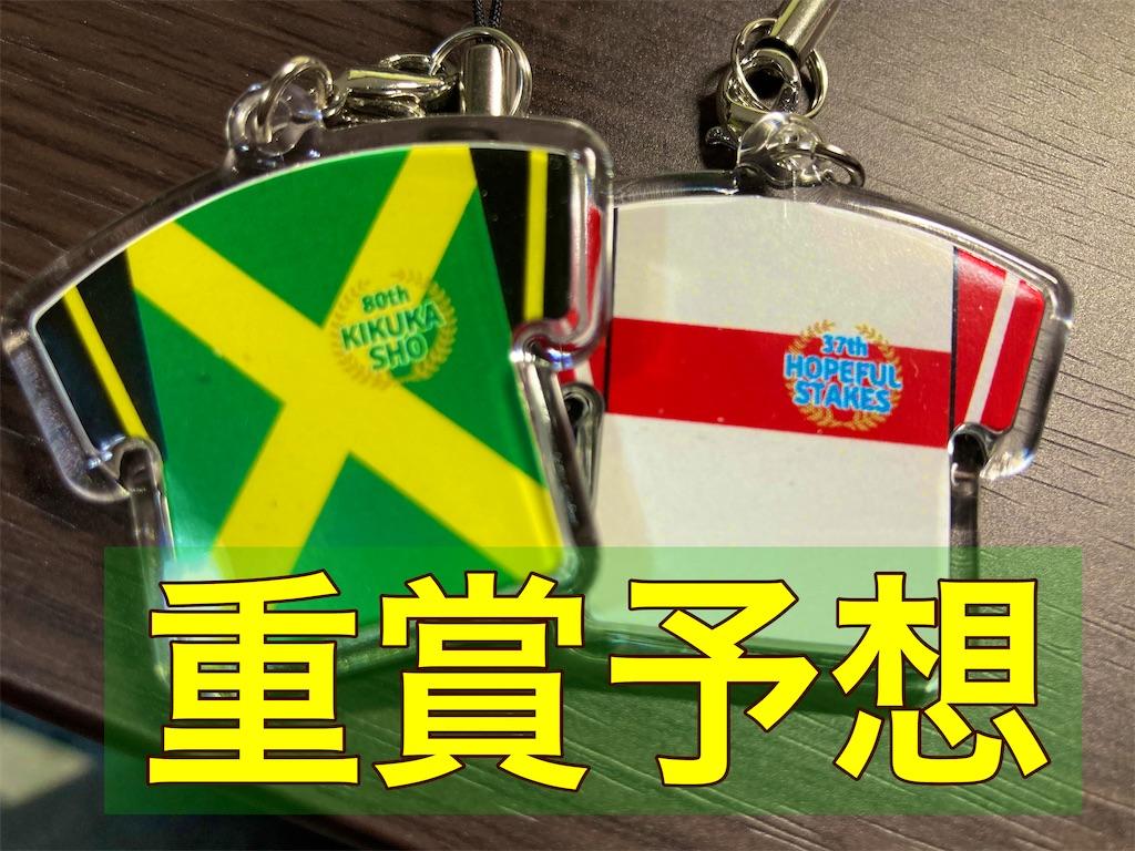 f:id:saionji-keiba:20210214015128j:plain
