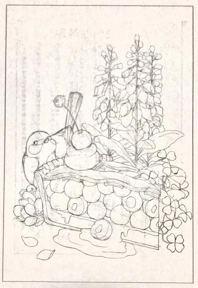 イラスト チェリーパイ 桜 クローバー ジギタリス 小鳥 テントウムシ