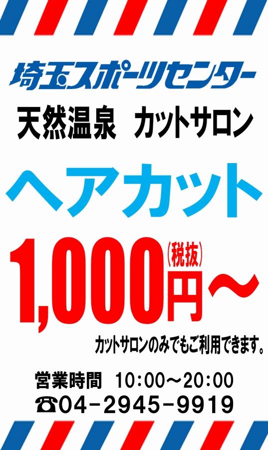 f:id:saisupofoot:20210130214712j:plain