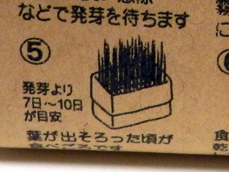 f:id:saitama-nekoyashiki:20190330084244j:plain