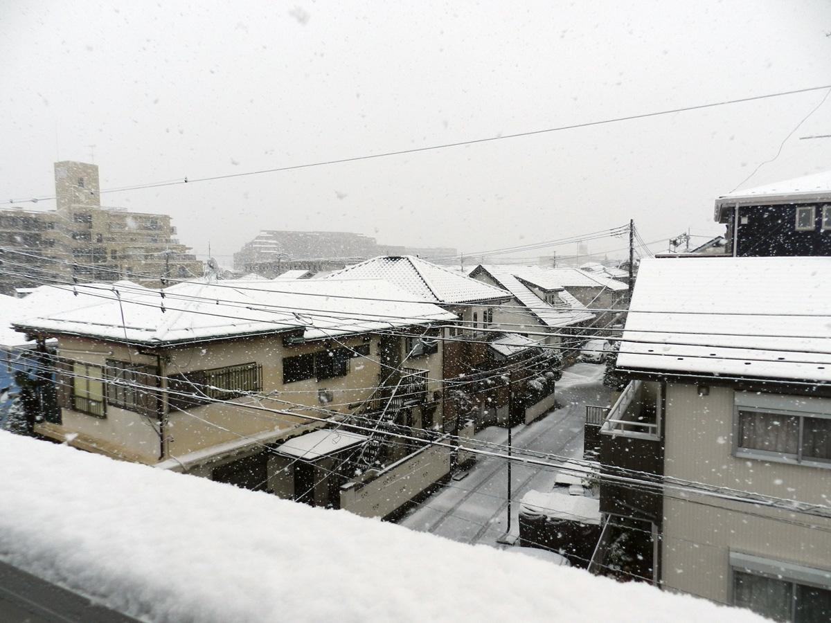 f:id:saitama-nekoyashiki:20200405090633j:plain