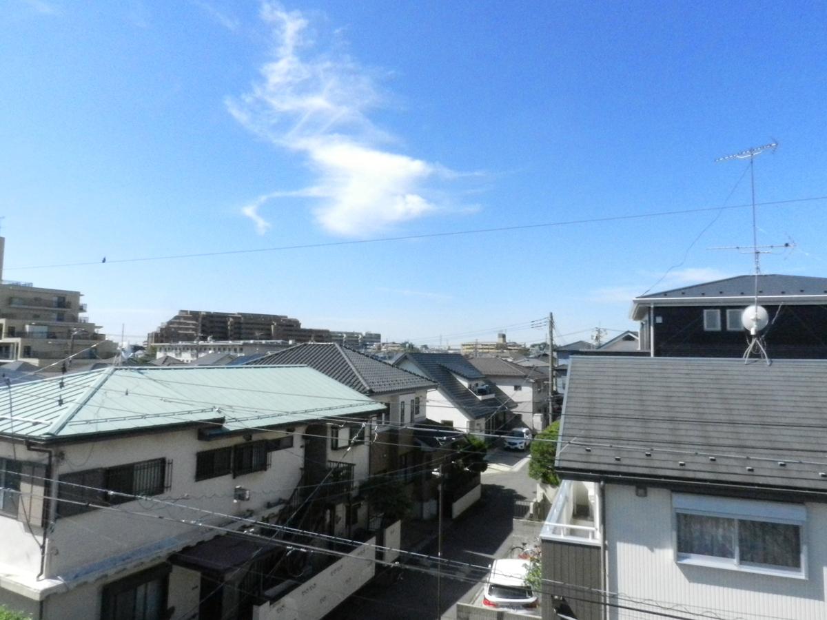 f:id:saitama-nekoyashiki:20200517111755j:plain