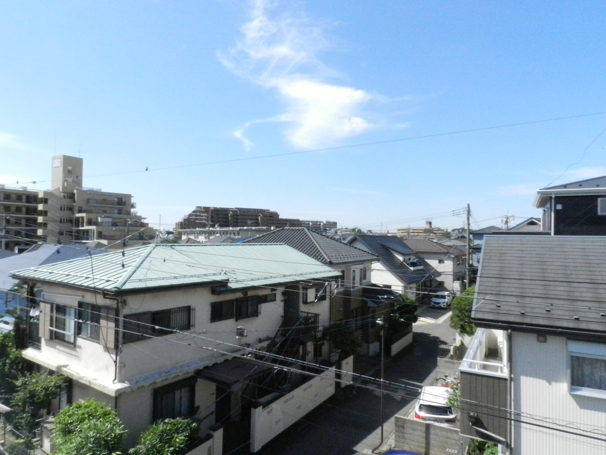 f:id:saitama-nekoyashiki:20200607093630j:plain