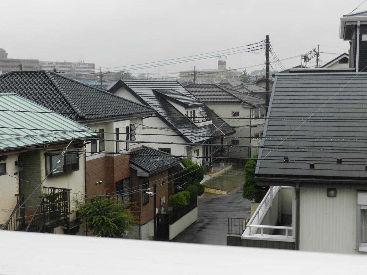 f:id:saitama-nekoyashiki:20200614063242j:plain