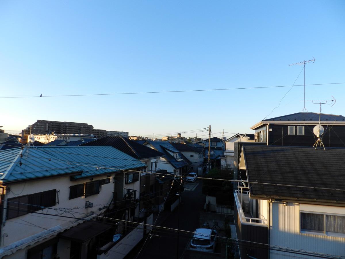 f:id:saitama-nekoyashiki:20201110065030j:plain
