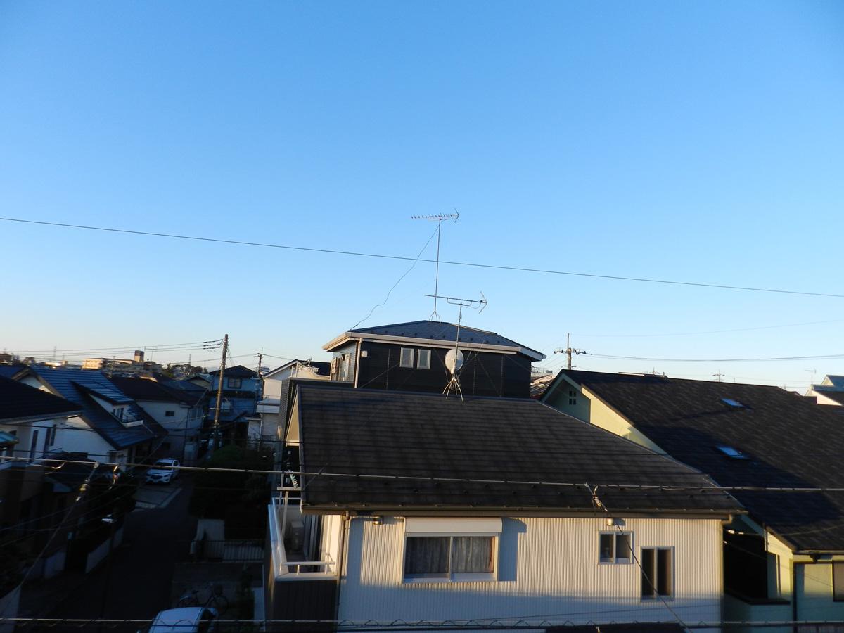 f:id:saitama-nekoyashiki:20201110071600j:plain