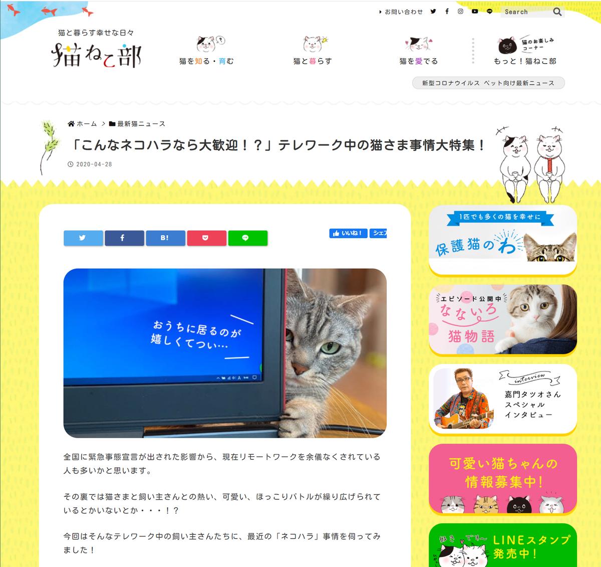 f:id:saitama-nekoyashiki:20201220132517j:plain
