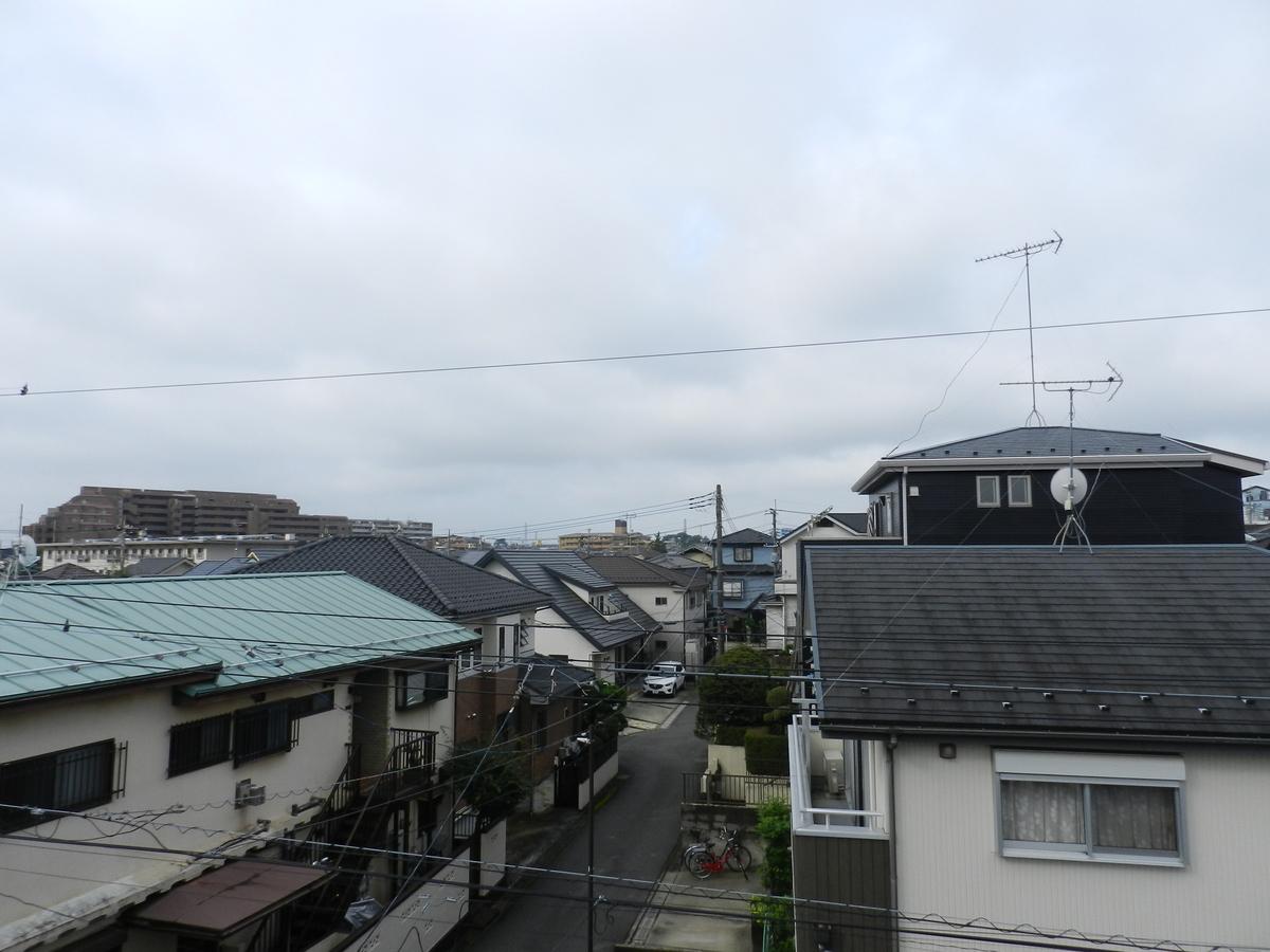 f:id:saitama-nekoyashiki:20210711073409j:plain