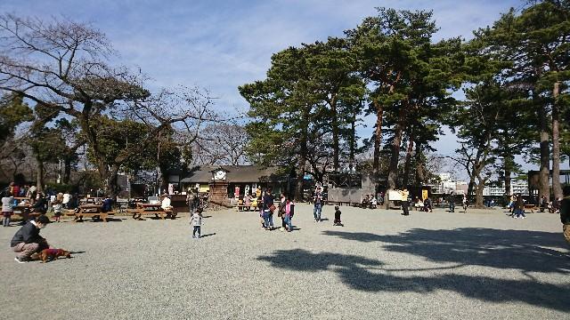 f:id:saitamagatama:20180305073236j:image