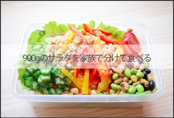 salad-900g