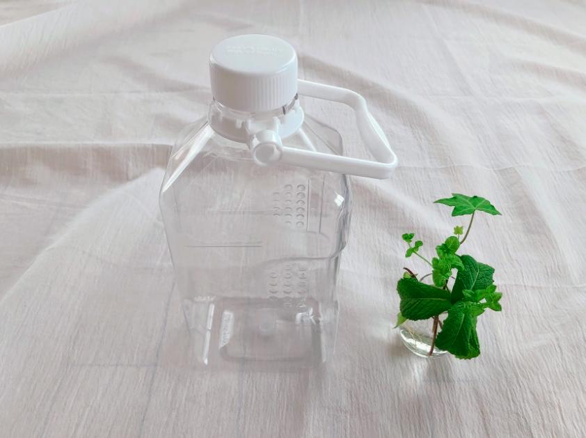 スーパー「イオン」で無料で汲める水ケース(2L)