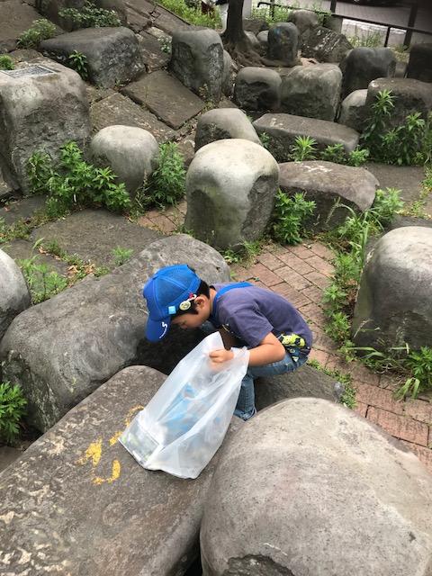 f:id:saitoh_naoki:20180529184709j:plain