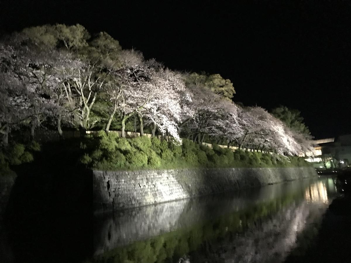 f:id:saitoh_naoki:20190403181752j:plain