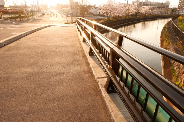 f:id:saitokana:20200408162038j:plain
