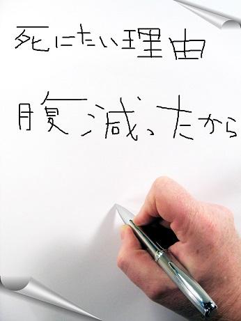 f:id:saitokenichi:20171103110950j:plain