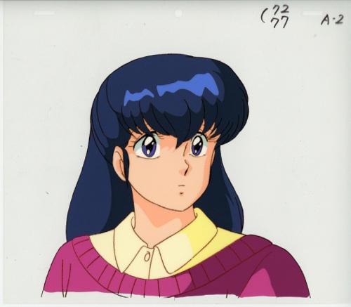 f:id:saitokenichi:20180527221942j:plain