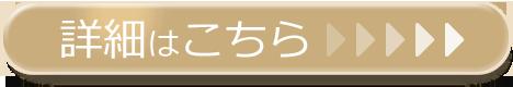 f:id:saitosaitokun:20170710222959p:plain