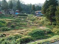 棚田の比較的軽微な崩壊(2005年10月)