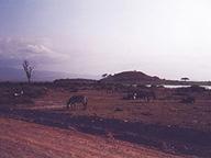 アンボセリの展望台の丘