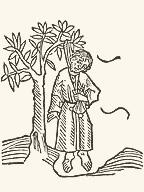 かわいそうなユダ……。「中世ヨーロッパ生活誌」(オットー・ボルスト、白水社)掲載の「旅行記」(ヨハネス・デ・モンテヴィリャ、1481年?)図版から