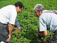 チェーンストアのビジネスパーソンが農家を訪ねるメリットは価格交渉のためだけではないはずだ