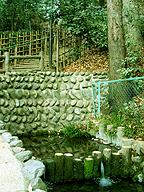 """真姿の池すぐそばの湧水口。最近整備された箇所とは言え、これは確かに""""枡形"""""""