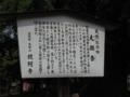 鑁阿寺-大銀杏