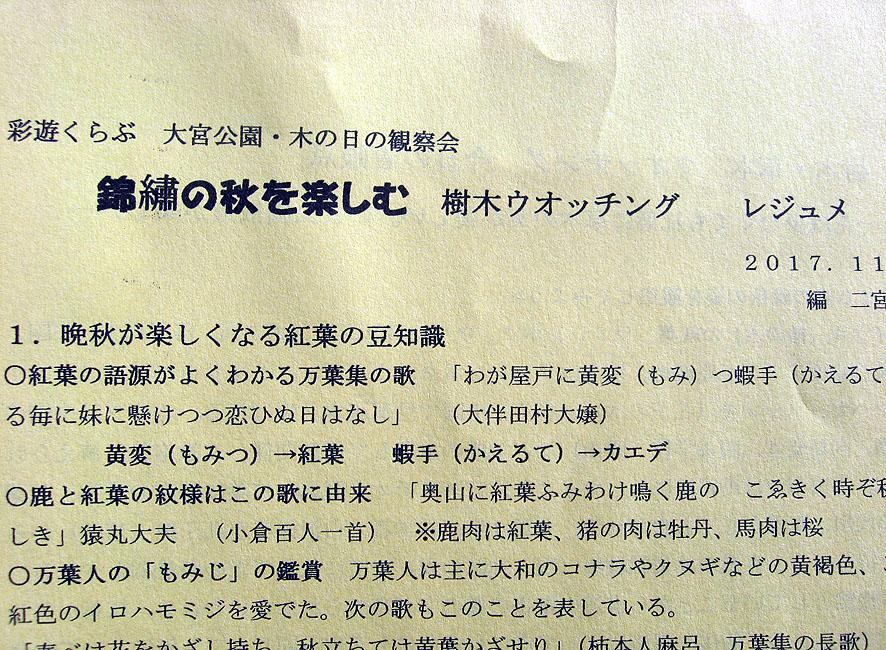 f:id:saiyuclub:20171102142020j:plain