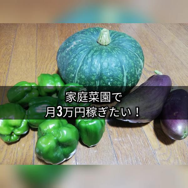 f:id:sakaemurakyouryokutai:20191203185131j:plain