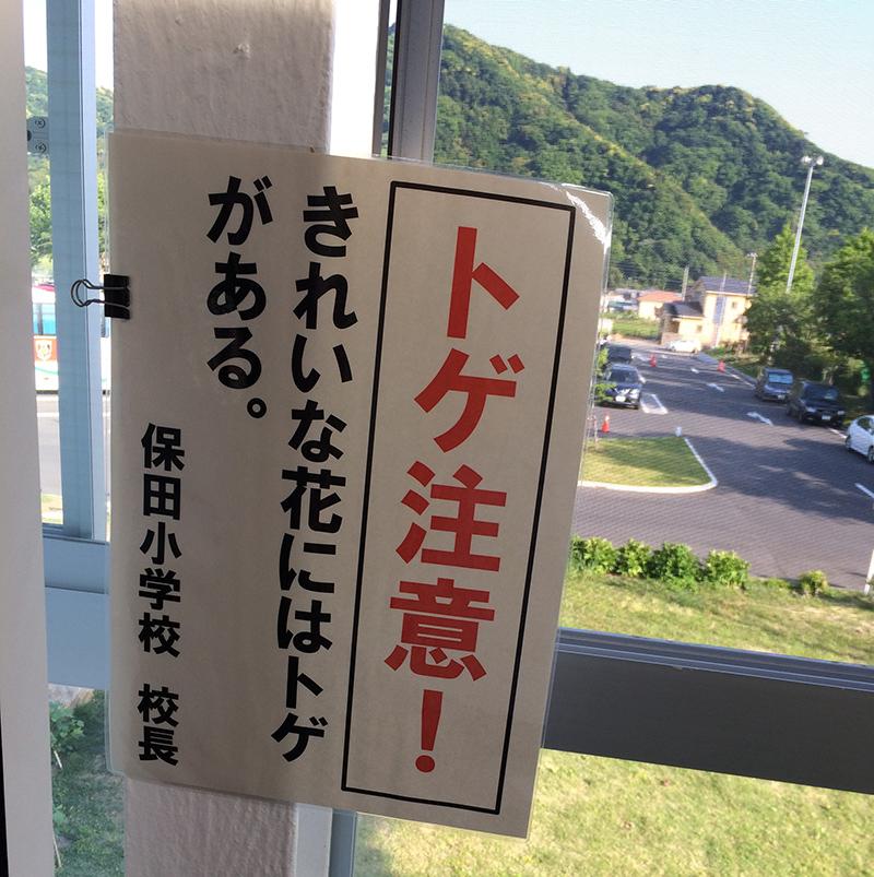 f:id:sakaguchi_hatebu:20170530000630j:plain