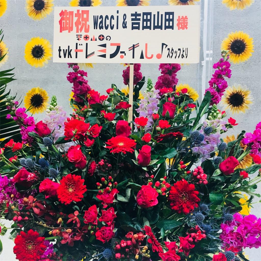 f:id:sakai_wasabi:20180212074130j:image
