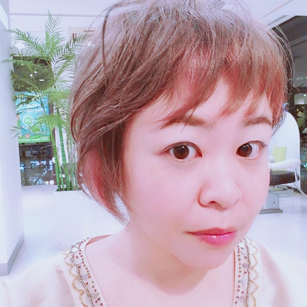 f:id:sakai_wasabi:20180720131315j:image