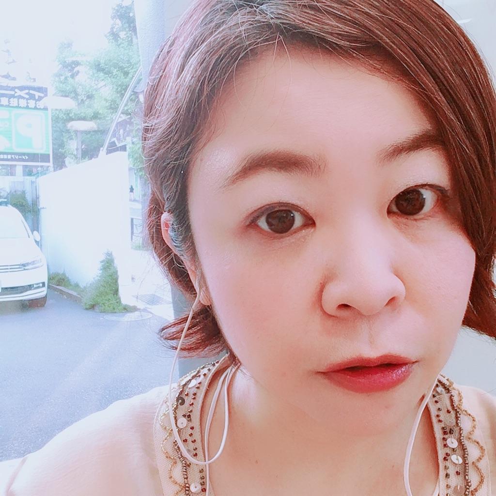 f:id:sakai_wasabi:20180720131719j:image