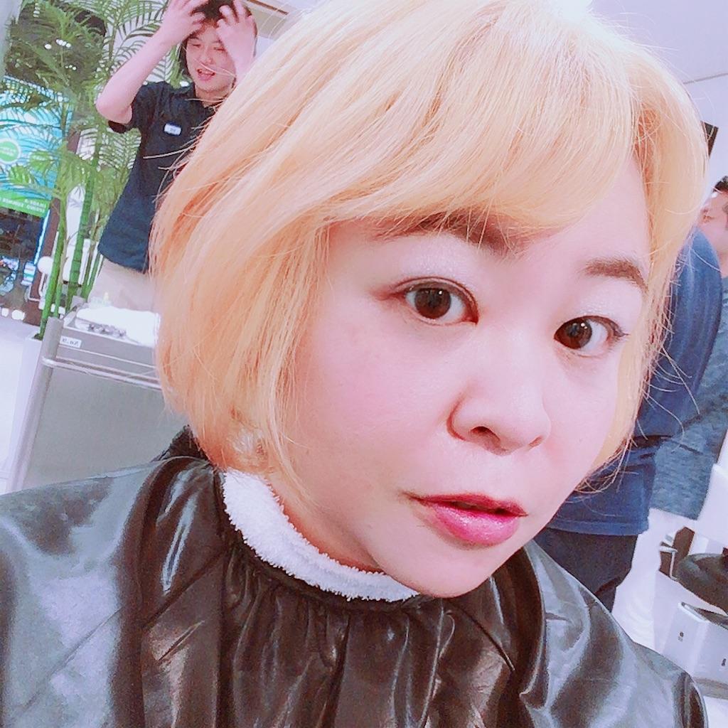 f:id:sakai_wasabi:20180720131807j:image