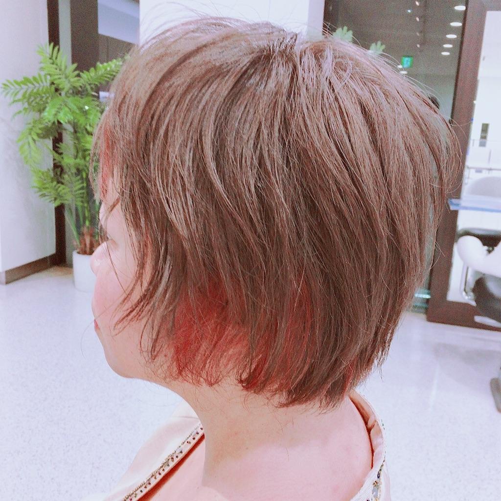 f:id:sakai_wasabi:20180720131937j:image