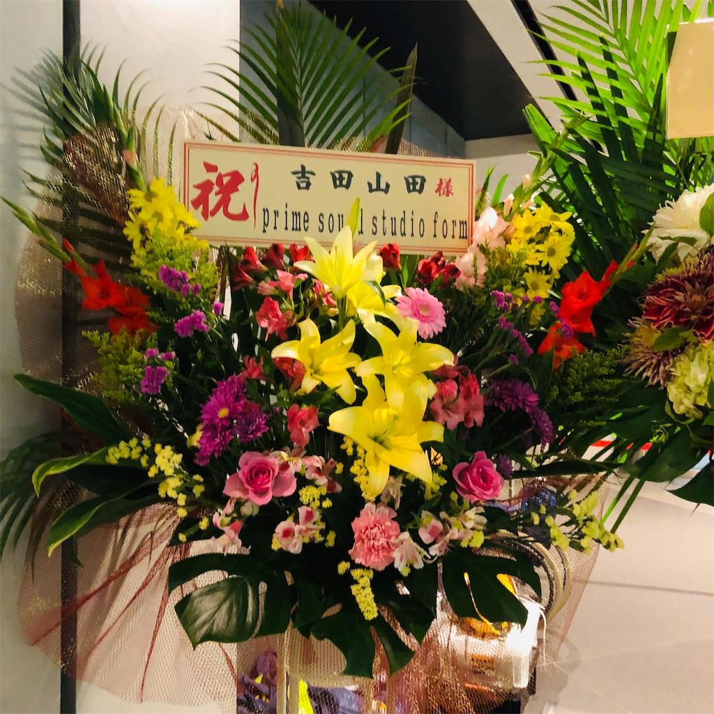 f:id:sakai_wasabi:20181118221409j:image