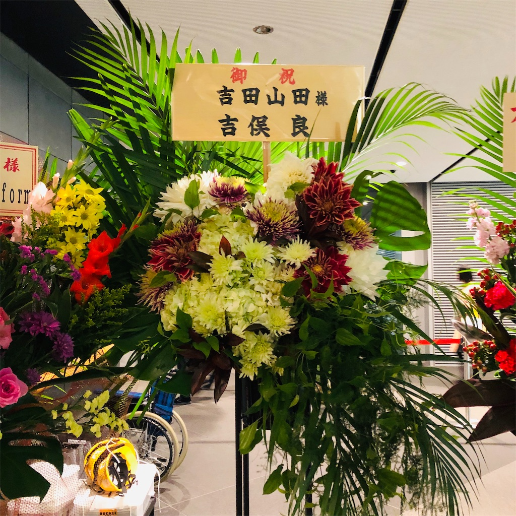 f:id:sakai_wasabi:20181118221436j:image