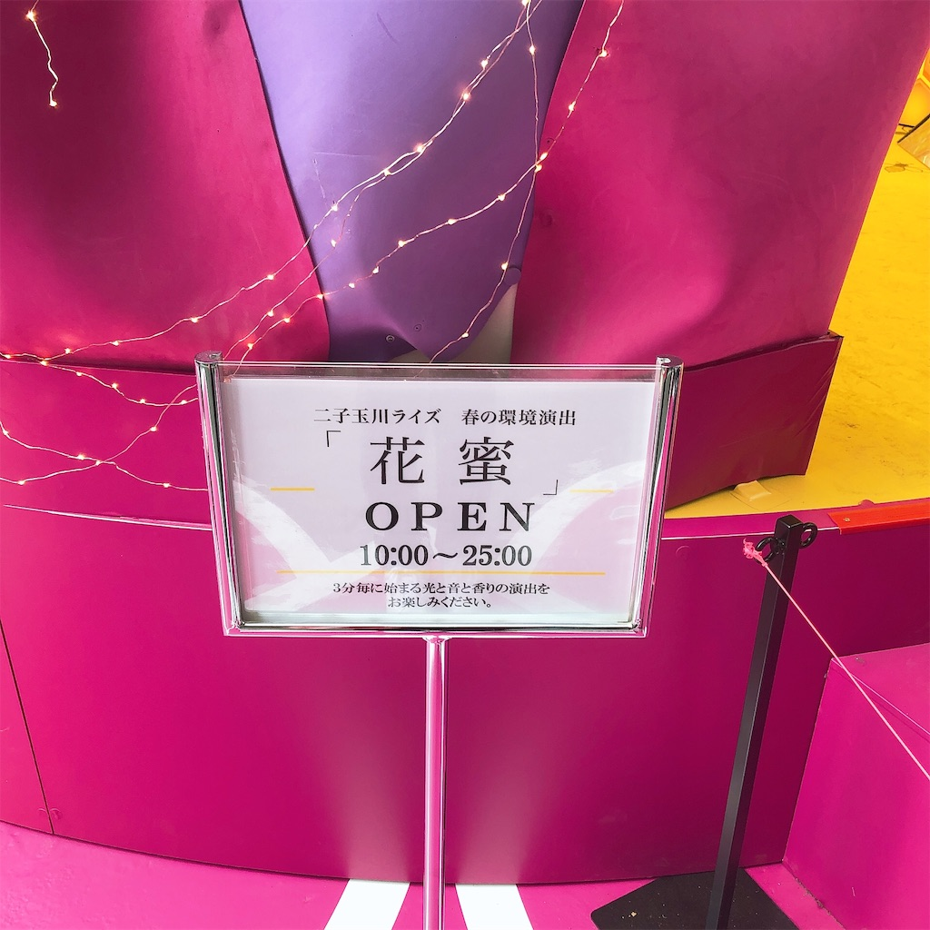 f:id:sakai_wasabi:20190323164739j:image