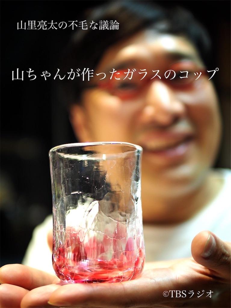 f:id:sakai_wasabi:20190516094632j:image