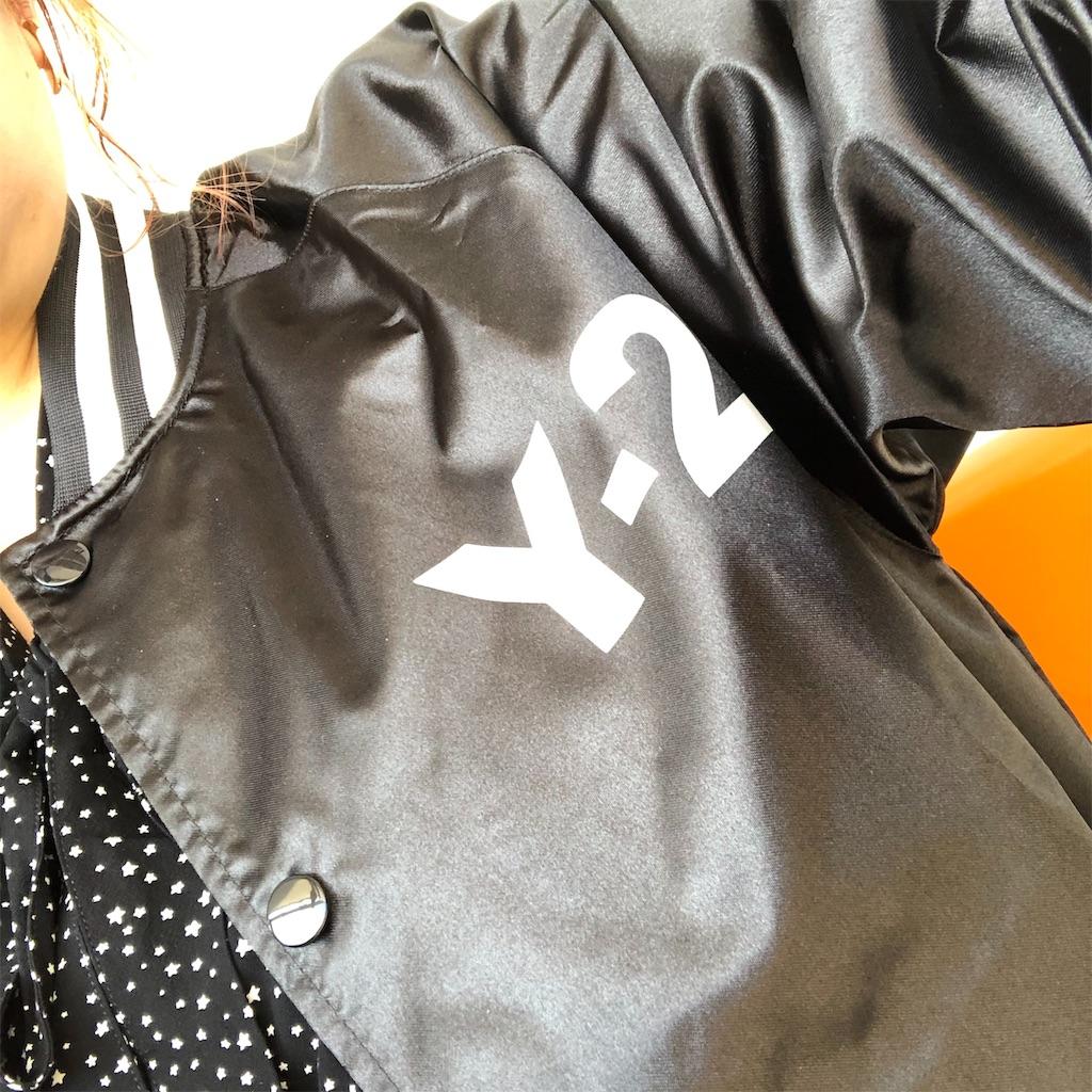 f:id:sakai_wasabi:20191110205619j:image