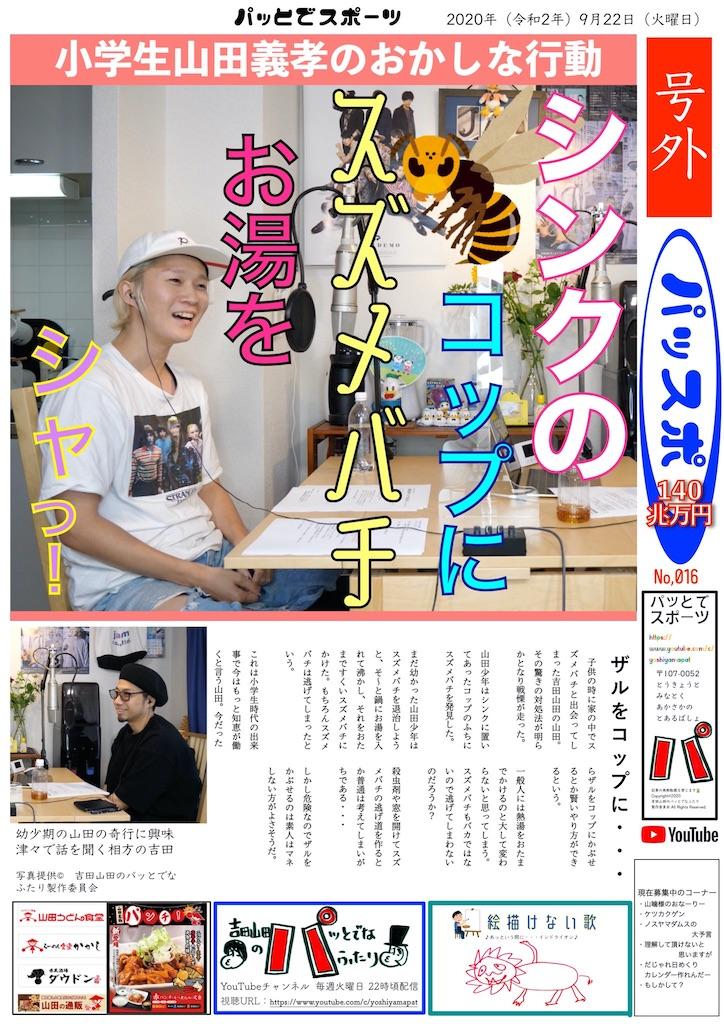 f:id:sakai_wasabi:20200927145737j:image