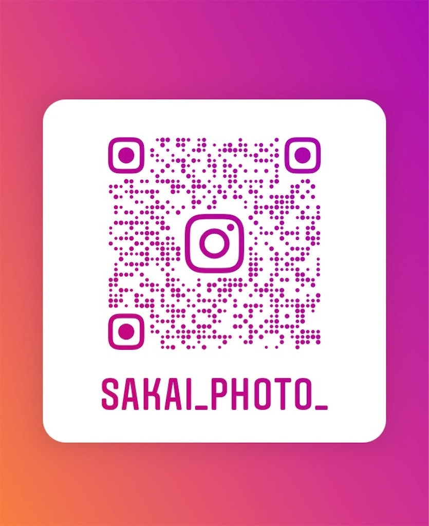 f:id:sakai_wasabi:20210115014236j:image