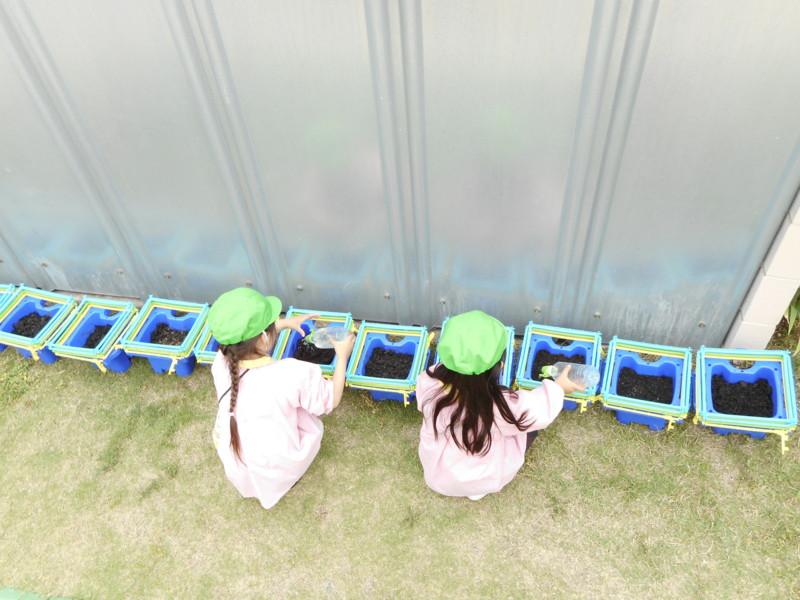 f:id:sakaikita:20170509095958j:image:left:w120,h90